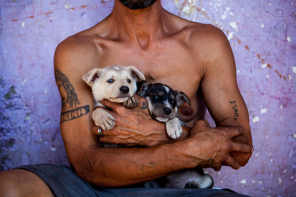 "Ladco with two newborn puppies in his arms he lives at the Roma settlement in Moldava nad Bodvou. ""Budulovskej Street"" is a segregated Roma settlement which is located about 2 km behind the Slovak village of Moldava nad Bodvou."
