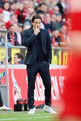 10.04.2016, Rhein Energie Stadion, Koeln, GER, 1. FBL, 1. FC Koeln vs Bayer 04 Leverkusen, 29. Runde, im Bild Cheftrainer Roger Schmidt (Leverkusen) fasst sich an die Nase // during the German Bundesliga 29th round match between 1. FC Cologne and Bayer 04 Leverkusen at the Rhein Energie Stadion in Koeln, Germany on 2016/04/10. EXPA Pictures © 2016, PhotoCredit: EXPA/ Eibner-Pressefoto/ Hommes<br /> <br /> *****ATTENTION - OUT of GER*****