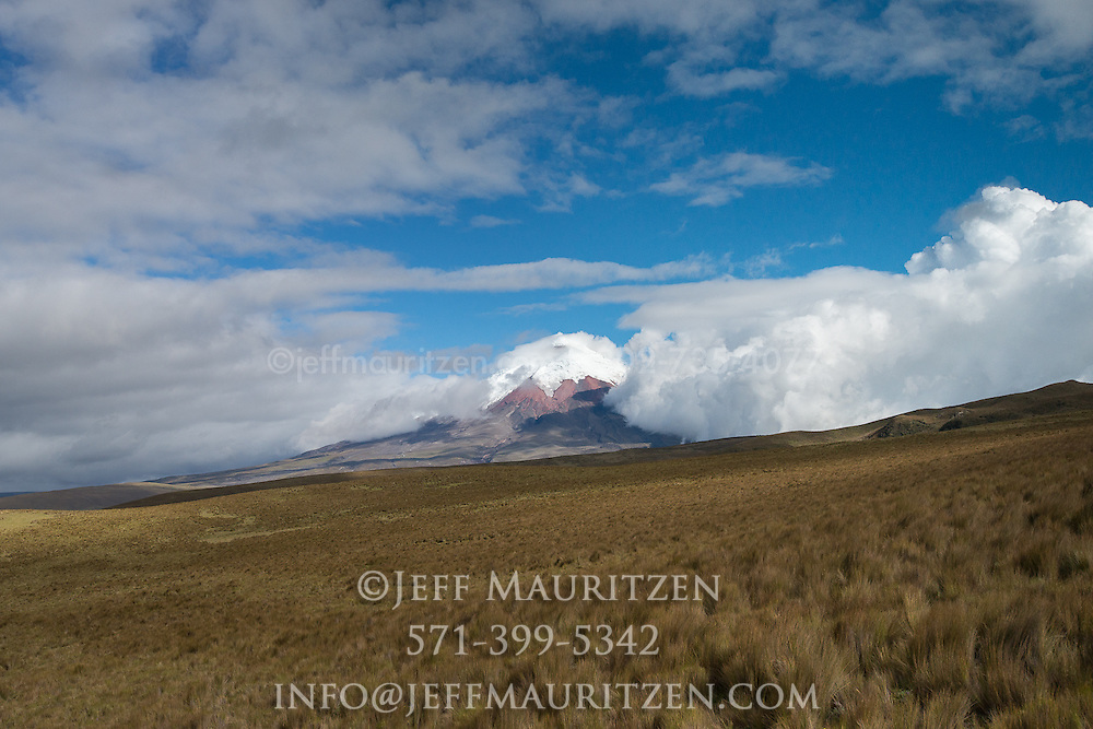 Paramo grasslands surround Cotopaxi volcano in Ecuador.