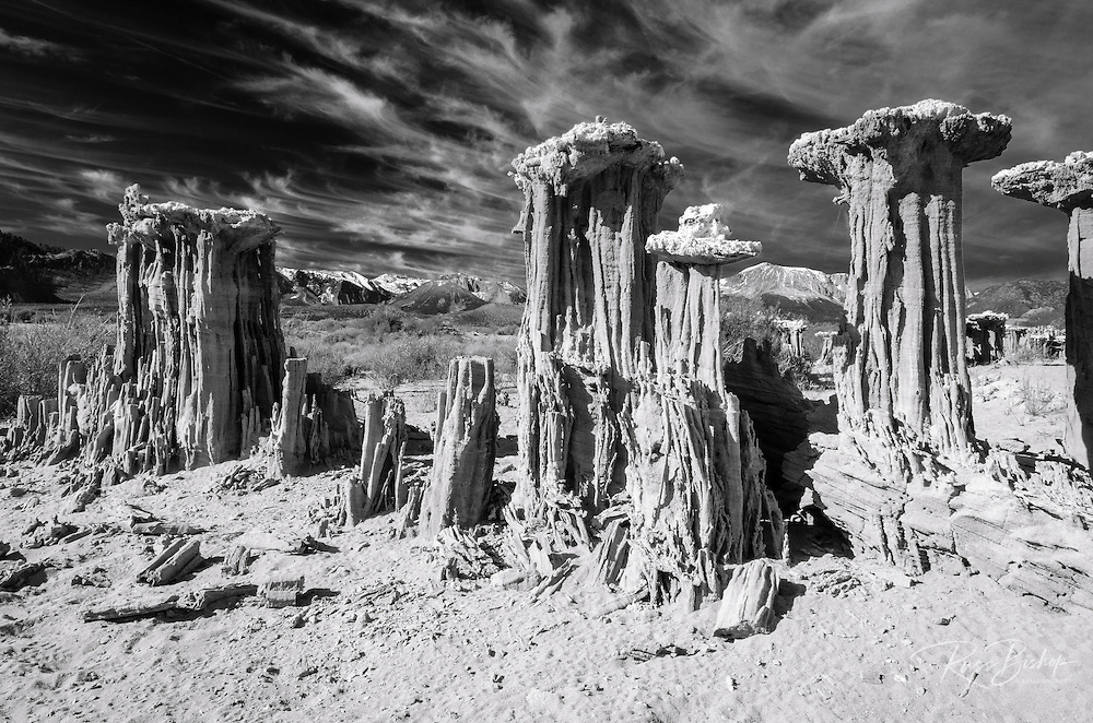 Sand tufa formations on the south shore of Mono Lake, Mono Basin National Scenic Area, California