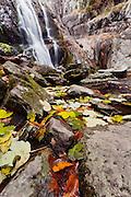 Waterfall Canyon in autumn