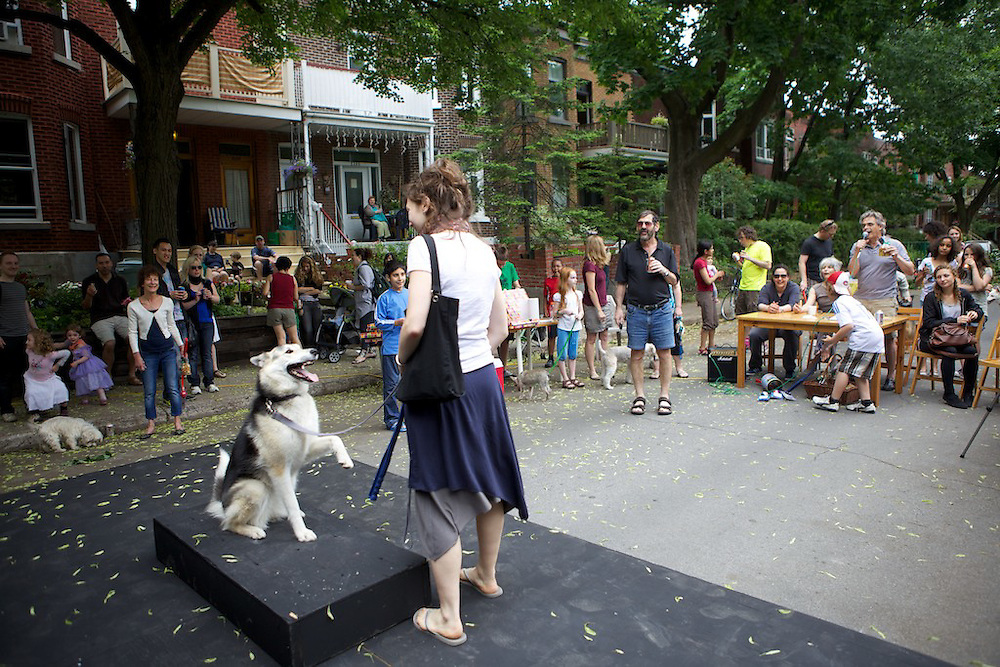 The residents of Belgrave avenue in NDG, Montreal block off the street for the day on June 11th, 2011 and engage in a number of activities including a dog show, doll making, a concert and photoshoot. Lemonade was sold at more then 4 stands for a premium of 25 cents.