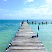 A seagull lands on a wooden dock at The Tortugranja Turtle Farm on June 10, 2014 in Isla Mujeres, Quintana Roo, Mexico.