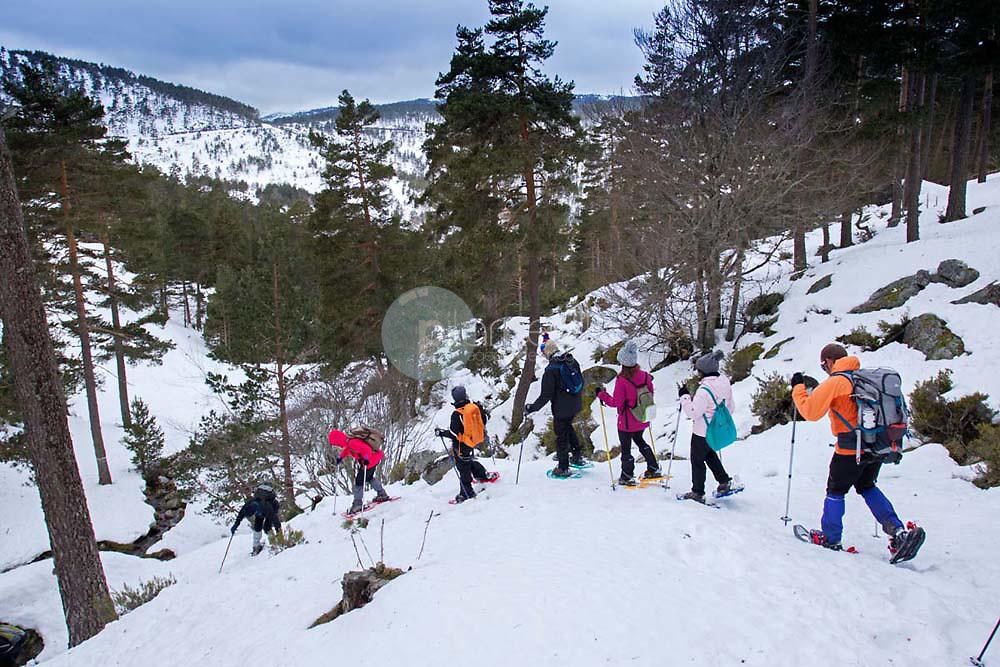 Raquetas nieve. Sierra Cebollera ©Daniel Acevedo / PILAR REVILLA
