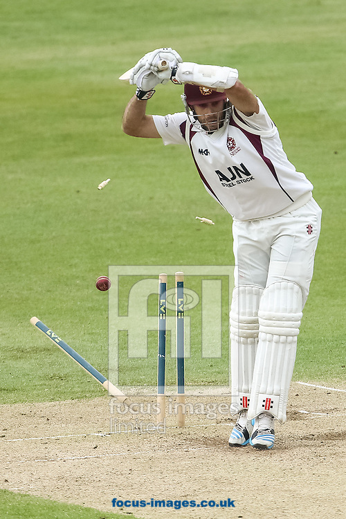 Kyle Coetzer of Northamptonshire County Cricket Club is clean bowled by Kabir Ali of Lancashire County Cricket Club (not shown) during the LV County Championship Div One match at the County Ground, Northampton. <br /> Picture by Andy Kearns/Focus Images Ltd 0781 864 4264  29/04/2014