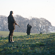 Broomhall Pheasant Shoot