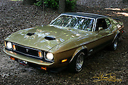 Front/side view of a gorgeous gold and black 1973 Ford Mustang Mach 1.