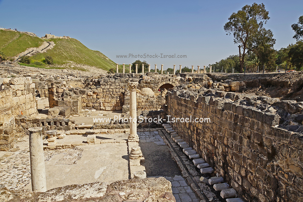 """Israel, Bet Shean public latrine with no seperation between them and no devision between male and female users. During the Hellenistic period Bet Shean had a Greek population and was called Scythopolis. In 64 BCE it was taken by the Romans, rebuilt, and made the capital of the Decapolis, the """"Ten Cities"""" of Samaria that were centers of Greco-Roman culture."""