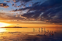 Sunset at the Great Salt Lake in Utah.