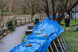 © Licensed to London News Pictures. 16/02/2020. Surrey, UK. A resident walks past flood barriers that have been placed near homes along the River Mole in Leatherhead as the Met Office issue an Amber Alert for heavy rain in Surrey as Storm Dennis sweeps across the South East with high winds and more rain for Sunday. Photo credit: Alex Lentati/LNP