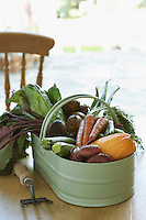 Fresh vegetables on table close-up