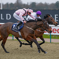 Buying Trouble - Adam Kirby wins from Sir Dudley - Jim Crowley<br /> The 32Red.com Handicap<br /> Lingfield Park<br /> 17/2/16.<br /> ©Cranhamphoto.com