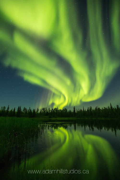 Aurora, Northern Lights, Northwest Territories, Night, Astronomy, AstroPhotography, NWT, Canada, Canadian North, Aurora Borealis, Lights in the Sky, Mysterious, Magical, Mystical, Autumn, Fall, Summer, Warm Nights