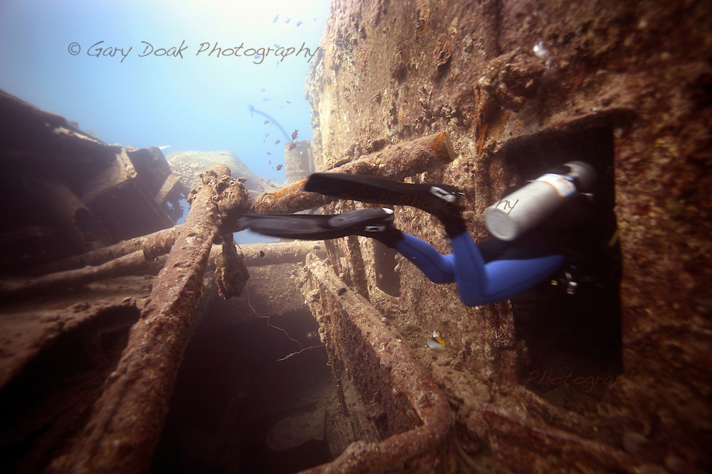 A diver enters the wreck of the SS. Thistlegorm in the Egyptian Red Sea