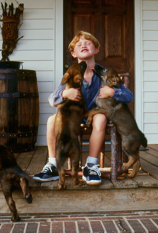 young girl on porch of an old house playing with German Shepherd puppies