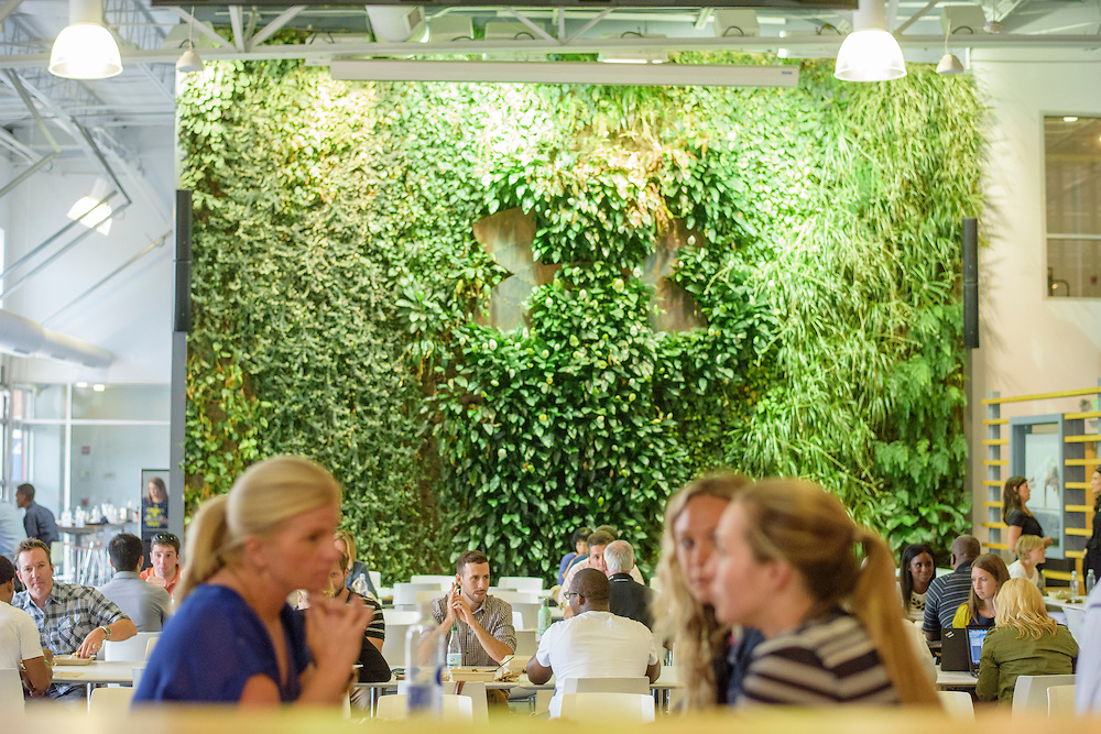 Baltimore, Maryland - September 03, 2014: Under Armour employees gather for lunch at the Humble &amp; Hungry Cafe. The cafe's name is a a riff on one of the Under Armour mantras, &quot;Be Humble, Stay Hungry.&quot; Inside the cafe is a living wall. The campus is located in the Tide Point area of Baltimore's Inner Harbor.<br /> <br /> Under Armour has contracted to uniform Notre Dame football.<br /> <br /> CREDIT: Matt Roth for The New York Times<br /> Assignment ID: 30163152A