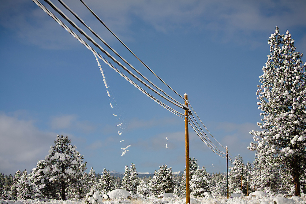 Snow falling from power lines in winter near Truckee, California