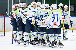 Players of Slovenia celebrate after winning during friendly Ice Hockey match between National Teams of Slovenia and Hungary, on April 11, 2017 in Celje, Slovenia. Photo by Vid Ponikvar / Sportida