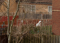 © Licensed to London News Pictures.  03/03/2015, Bristol, UK.  Police search in Barton Court, Barton Hill for missing teenager Rebecca Watts aged 16 who left home a mile away in Crown Hill in the St George area of Bristol last Thursday. Police have carried out extensive searches across Bristol and today said they had found body parts in Barton Court.  A total of 7 people have now been arrested in connection with the case with 2 arrested on suspicion of the murder of Becky Watts, having previously been arrested on suspicion of kidnapping her.  Photo credit : Simon Chapman/LNP