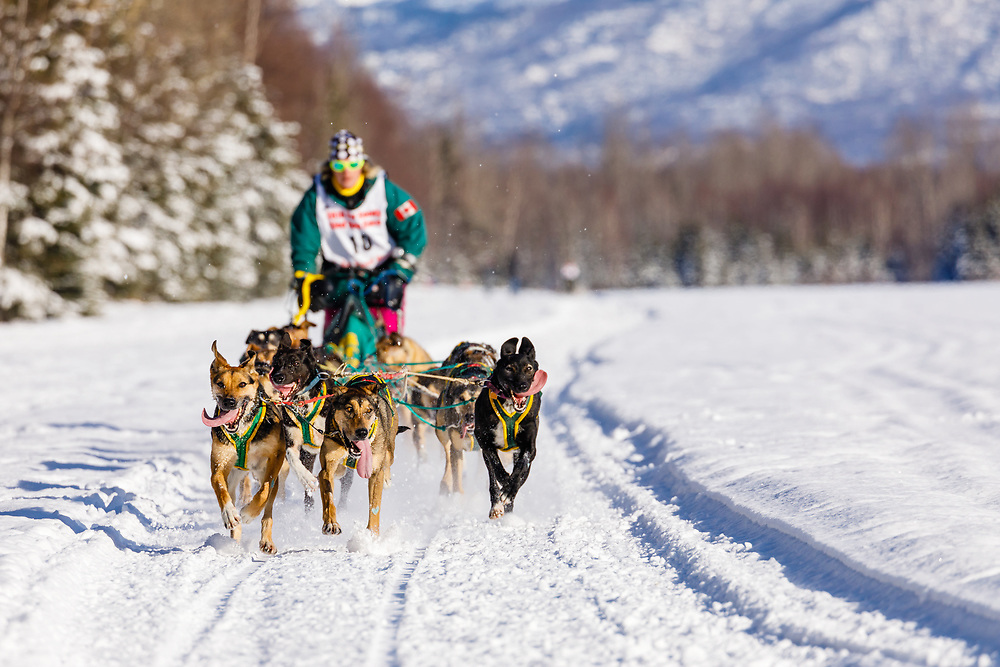 Musher Lina Streeper competing in the Fur Rendezvous World Sled Dog Championships at Campbell Airstrip in Anchorage in Southcentral Alaska. Winter. Afternoon.