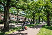In Eindhoven fietst een meisje over het fietspad terwijl ze op haar telefoon kijkt.<br /> <br /> In Eindhoven a girl rides her bike while looking at her phone.