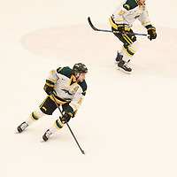 5th year forward Ian McNulty (14) of the Regina Cougars in action during the Men's Hockey home game on February 3 at Co-operators arena. Credit: Arthur Ward/Arthur Images