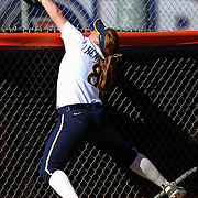 3/1/13 2:53:59 PM --- SOFTBALL SPORTS SHOOTER ACADEMY 010 --- Fullerton, CA: California's  softball player #8 Danielle Henderson snags a foul ball over the dugout in Friday afternoon's game. Photo by Bryan Lynn, Sports Shooter Academy