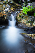 Cascade on Limekiln Creek, Limekiln State Park, Big Sur, California