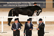 Hengstenkeuring Commissie<br /> Faderpaard / Friese Hengstenkeuring 2016<br /> © DigiShots