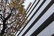 Tokyo, Aoyama -