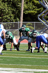 17 September 2011: T.J. Stinde lines up in the backfield behind linesmen Alex Bell and Matt Siegert during an NCAA Division 3 football game between the Aurora Spartans and the Illinois Wesleyan Titans on Wilder Field inside Tucci Stadium in.Bloomington Illinois.