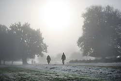 © Licensed to London News Pictures. 08/11/2019. London, UK. Dog walkers at first light in a frost and fog covered landscape at Richmond Park in west London on a bright Autumn morning. Parts of the north of England have experienced severe flooding following torrential rainfall. Photo credit: Ben Cawthra/LNP