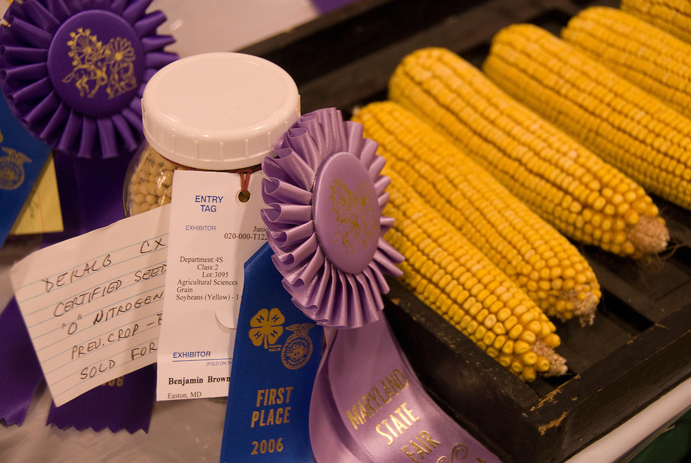 Corn and prize ribbons