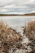 Oasi Pantano di Pignola, Basilicata, Italia, 27/02/2016<br /> Uno scorcio del Lago Grande, all'interno dell'oasi del WWF Pantano di Pignola. Il lago sorge a 750 metri sul livello del mare. Sono 158 la specie di Uccelli censite nelle diverse stagioni delle quali 37 nidificanti nell'area del lago che si propone come una delle pi&ugrave; importanti stazioni per la sosta e riproduzione dell'avifauna.<br /> <br /> Oasis Pantano Lake in Pignola, Basilicata, Italy, 27/02/2016<br /> A glimpse of Great Lake, in the Pantano Lake in Pignola WWF Oasis. The lake is 750 meters above sea level. About 158 species of birds are surveyed in different seasons, including 37 nesting in the area of the lake that is evaluated as one of the most important place for resting and breeding birds.