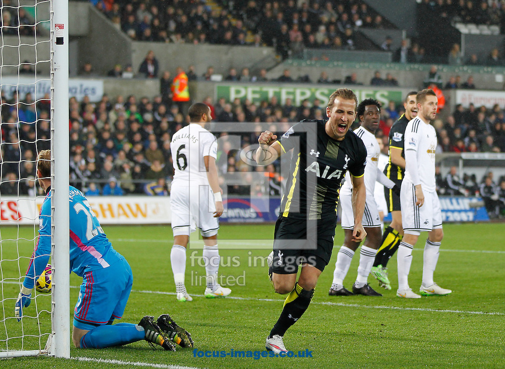 Harry Kane of Tottenham Hotspur celebrates the first goal during the Barclays Premier League match at the Liberty Stadium, Swansea<br /> Picture by Mike Griffiths/Focus Images Ltd +44 7766 223933<br /> 14/12/2014