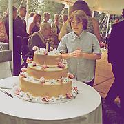 Josh Levine Weddings