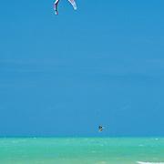 Kitesurfing in Holbox island. Quintana Roo, Mexico.