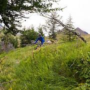 Jökull Bergmann mountain biking at Þverá, Skíðadalur, North, Iceland.