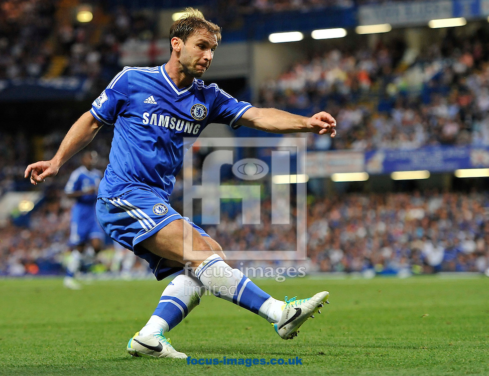 Picture by Alan Stanford/Focus Images Ltd +44 7915 056117<br /> 21/08/2013<br /> Branislav Ivanovic of Chelsea during the Barclays Premier League match at Stamford Bridge, London.