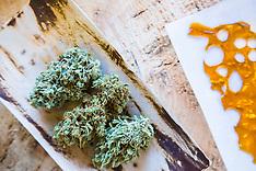 Oregon Coast Cannabis - Photos, marijuana, flower, medical, recreational