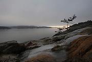 Picture by Mark Larner. Lokholmen, West coast of Sweden. December 2008.