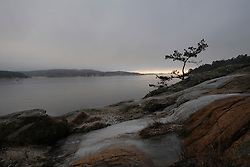 Picture by Mark Larner. Lokholmen, West coast of Sweden. December 2008.