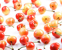 Studio shot of cherries on white background