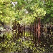 Katanga River