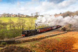© Licensed to London News Pictures. 16/02/2019. Goathland UK. The 1956 Locomotive 80136 pulls the Pullman service through the North Yorkshire village of Goathland this morning on the North Yorkshire Moors Railway, this is the first of the steam train's scheduled to run between Pickering & Grosmont during the February half term which takes place from the 16th February to the 24th February. Photo credit: Andrew McCaren/LNP