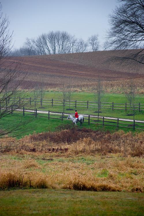 Lone jockey on horse