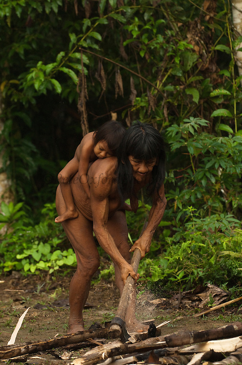 Huaorani Indian woman, Bebanca Wane cutting fire wood while carrying a baby on her back.<br /> Bameno Community. Yasuni National Park.<br /> Amazon rainforest, ECUADOR.  South America<br /> This Indian tribe were basically uncontacted until 1956 when missionaries from the Summer Institute of Linguistics made contact with them. However there are still some groups from the tribe that remain uncontacted.  They are known as the Tagaeri &amp; Taromenane. Traditionally these Indians were very hostile and killed many people who tried to enter into their territory. Their territory is in the Yasuni National Park which is now also being exploited for oil.
