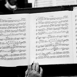 Reno Philharmonic (030917)