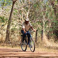 Un llanero usa su bicicleta para desplazarse en sus rutinas de trabajo. El Hato Piñero, ubicado en los llanos centrales de Venezuela, Estado Cojedes; constituye un desarrollo que se caracteriza por el turismo ecológico, donde los visitantes pueden disfrutar de la diversidad de la fauna, las actividades ganaderas y agroindustriales. El Hato Piñero es un retiro para los amantes de la naturaleza, observadores de aves o los viajeros que simplemente buscan paz y tranquilidad. Estado Cojedes. Venezuela. A llanero uses his bicycle to move in his work routines. El Hato Piñero, located in the central plains of Venezuela, Cojedes State; It is a development characterized by ecological tourism, where visitors can enjoy the diversity of fauna, livestock and agroindustrial activities. El Hato Piñero is a retreat for nature lovers, birdwatchers or travelers who simply seek peace and tranquility. Cojedes State. Venezuela.