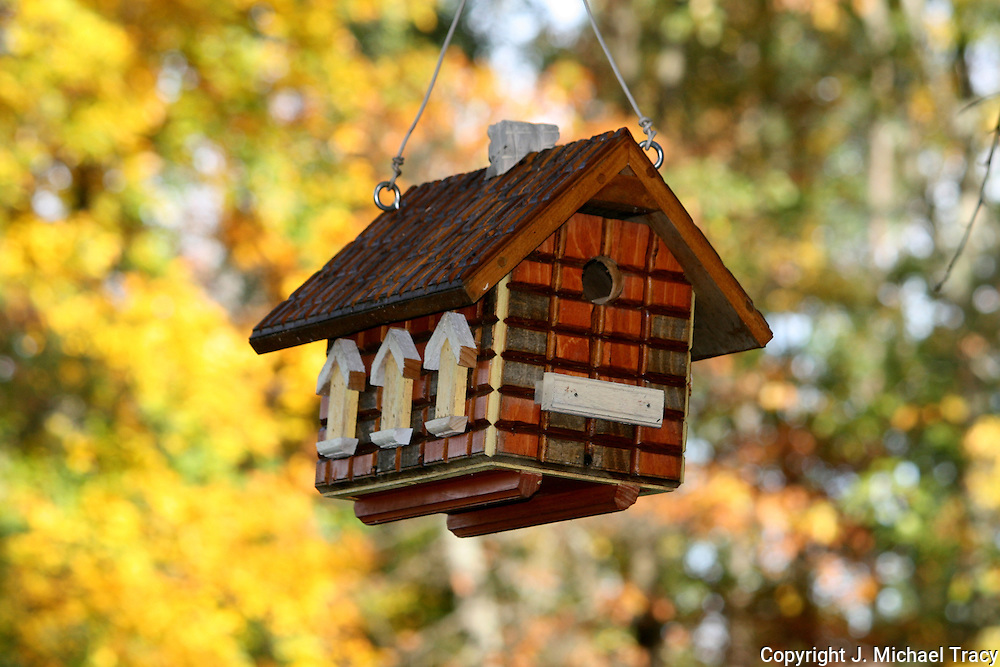 Birdhouse hanging from a tree. Fall in Upstate New York. 1